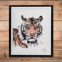 Meg Hawkins Framed Wall Art - Tiger 50cm